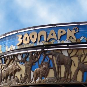 Зоопарки Щучьего